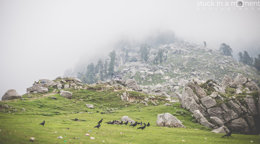 A feast for crows triund trek